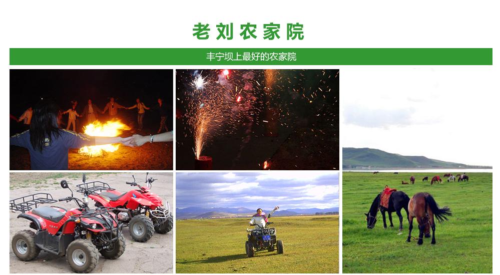 老刘农家院11