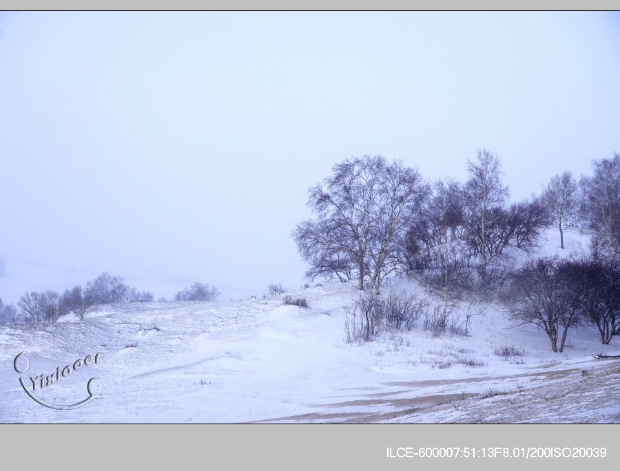 风雪3-10
