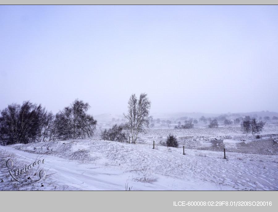 风雪3-13