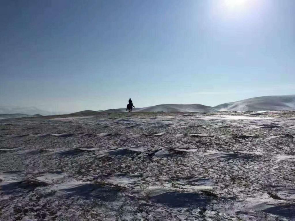 冬季雪景5