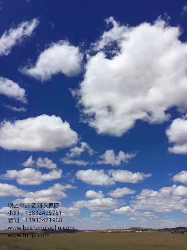 春天3_副本