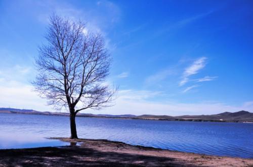 芭乐视频app下载地址最新闪电湖2